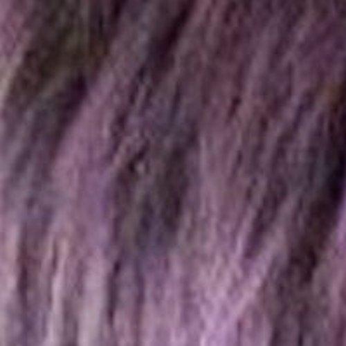 1B-PurpleTL